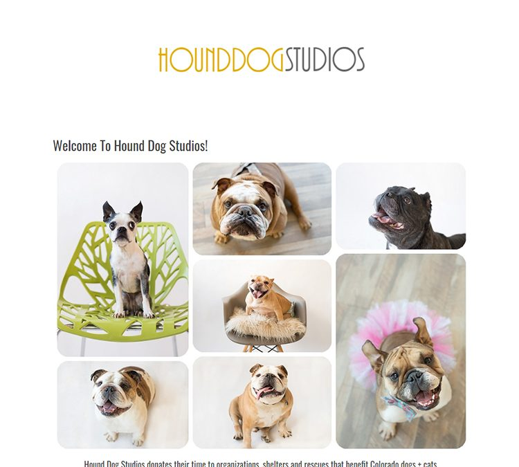 Hound Dog Studios | Custom Photography Website